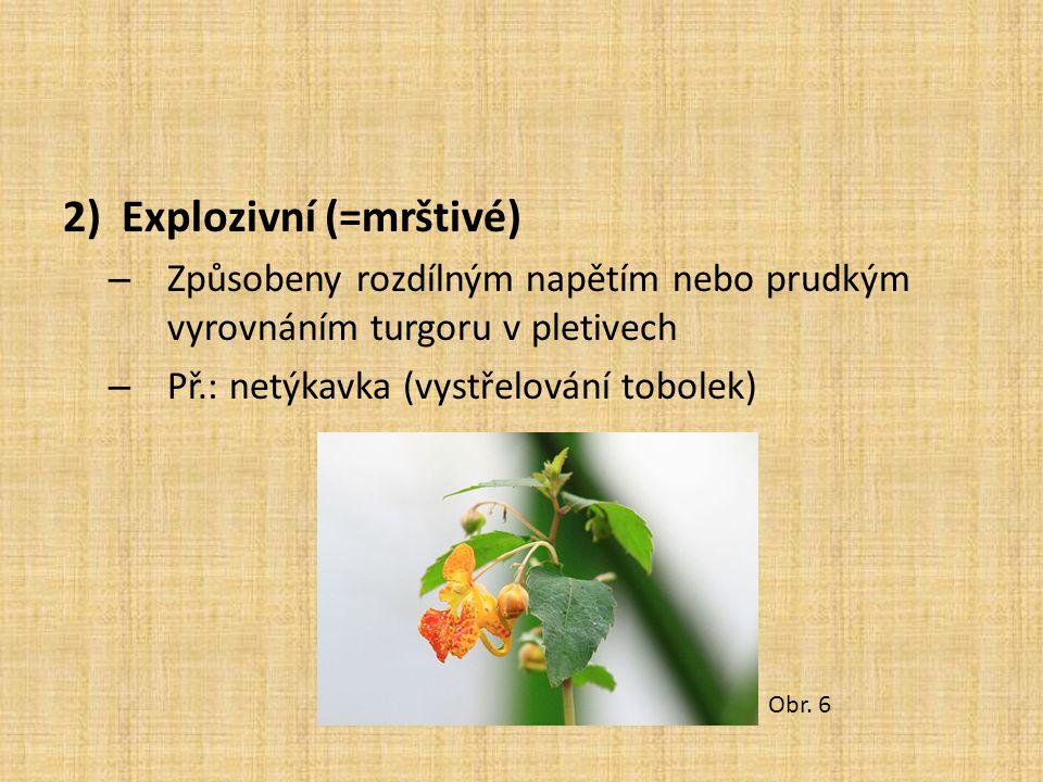 2)Explozivní (=mrštivé) – Způsobeny rozdílným napětím nebo prudkým vyrovnáním turgoru v pletivech – Př.: netýkavka (vystřelování tobolek) Obr. 6