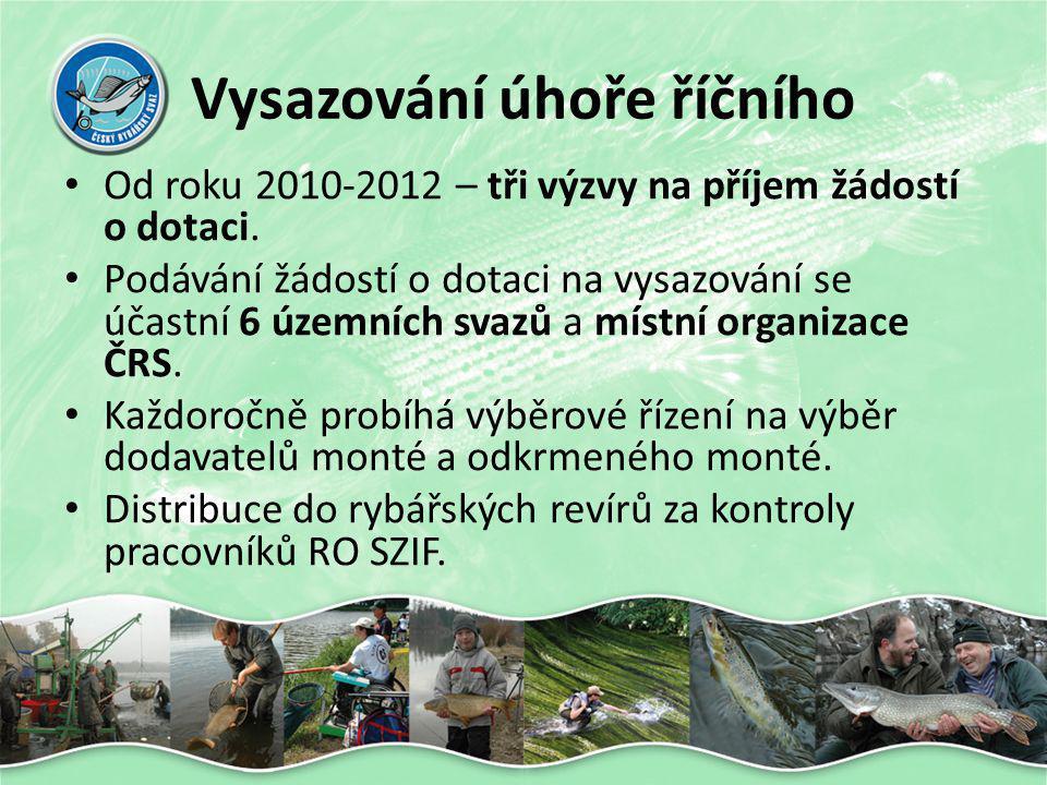 Co můžeme pro úhoře udělat??.• Budování rybích přechodů.