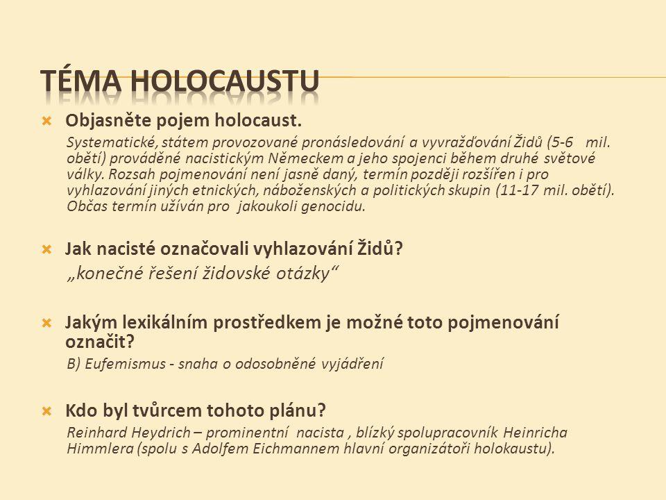  Objasněte pojem holocaust.