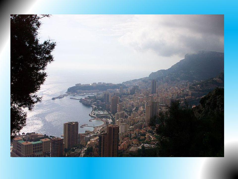 • Podle ústavy z roku 1962 je Monako dědičnou konstituční monarchií – vláda přechází na mužského potomka hlavy státu. Tím je kníže, jako poradní orgán