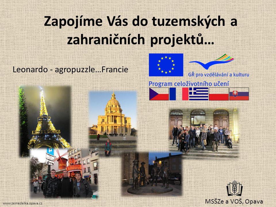 Zapojíme Vás do tuzemských a zahraničních projektů… MSŠZe a VOŠ, Opava Leonardo - agropuzzle…Francie www.zemedelka.opava.cz