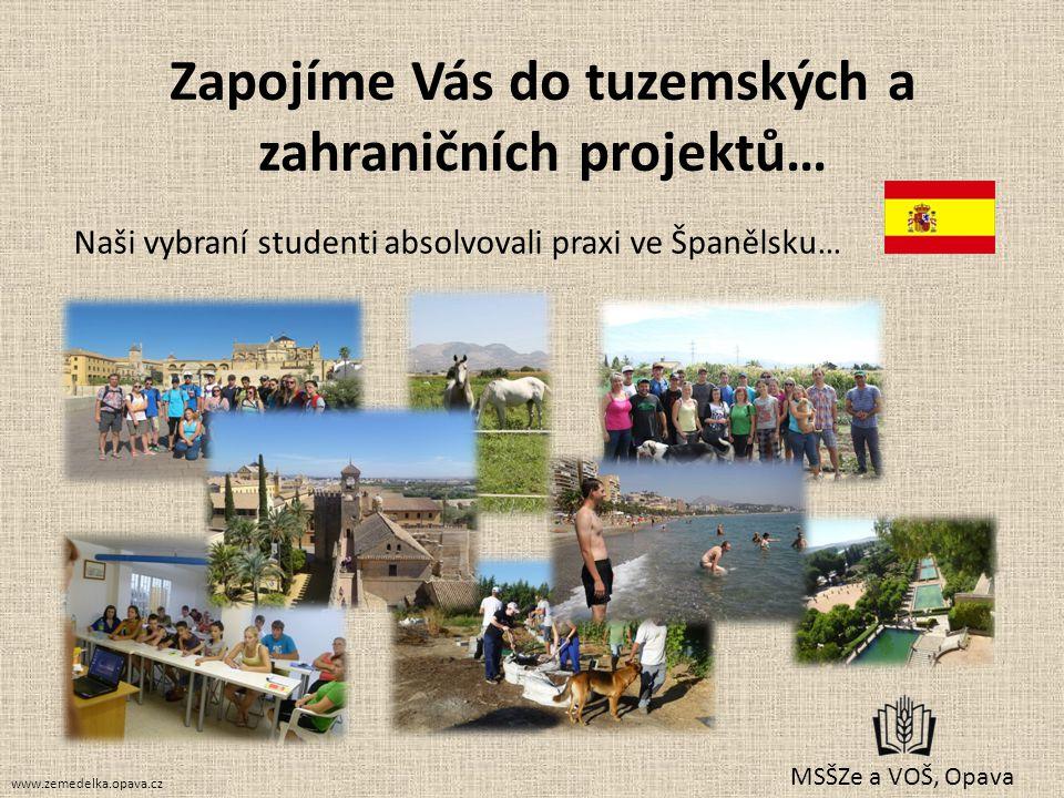 Zapojíme Vás do tuzemských a zahraničních projektů… MSŠZe a VOŠ, Opava Naši vybraní studenti absolvovali praxi ve Španělsku… www.zemedelka.opava.cz