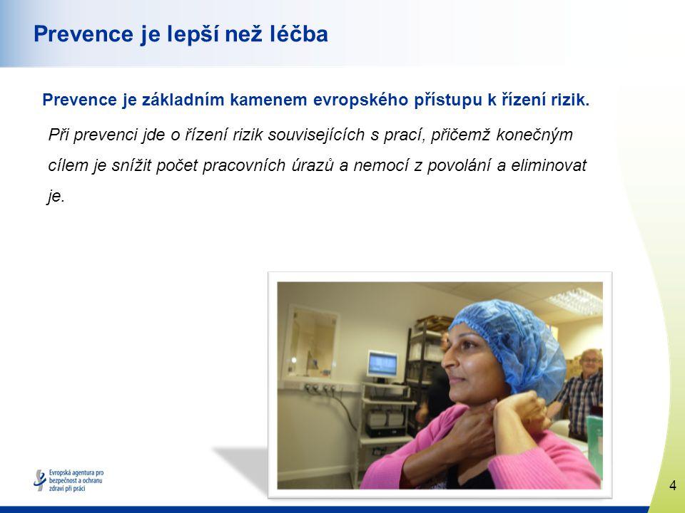 4 www.healthy-workplaces.eu Prevence je lepší než léčba Prevence je základním kamenem evropského přístupu k řízení rizik.