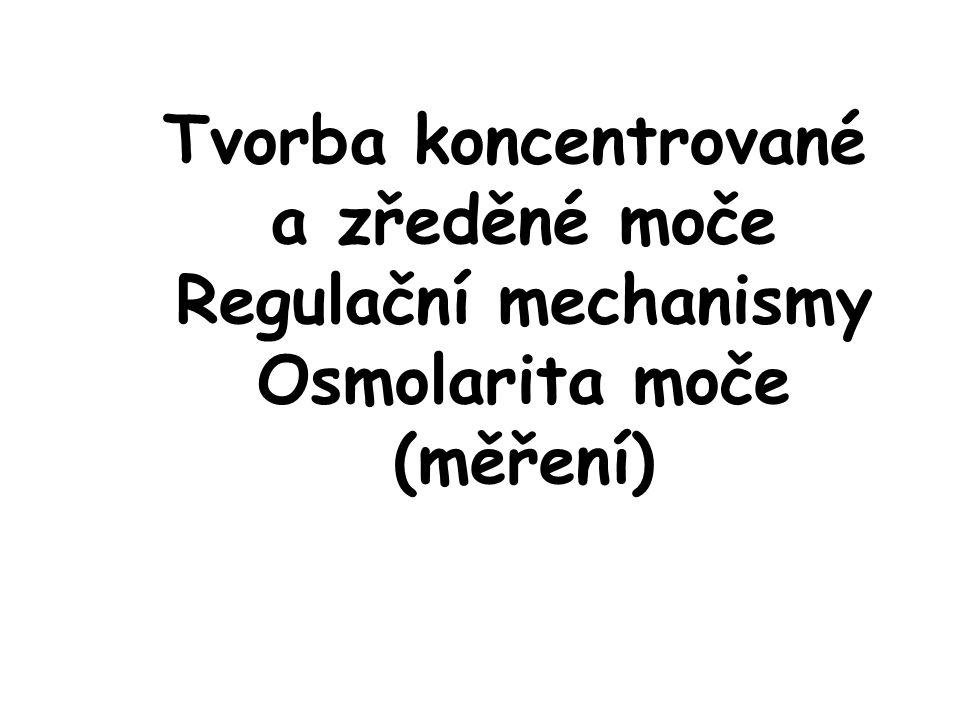 Tvorba koncentrované a zředěné moče Regulační mechanismy Osmolarita moče (měření)