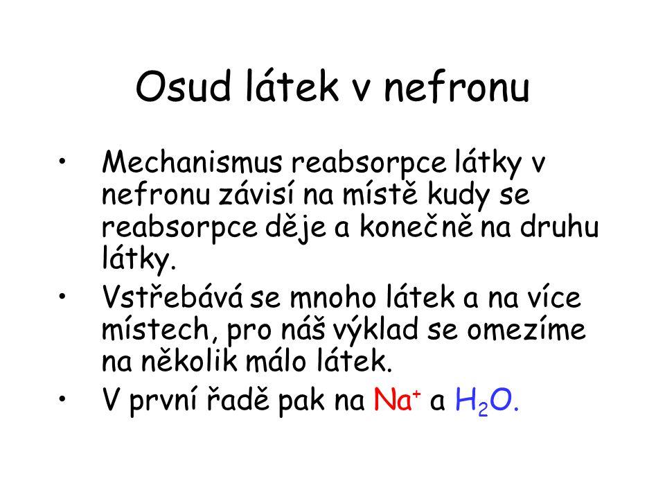 Osud látek v nefronu •Mechanismus reabsorpce látky v nefronu závisí na místě kudy se reabsorpce děje a konečně na druhu látky. •Vstřebává se mnoho lát