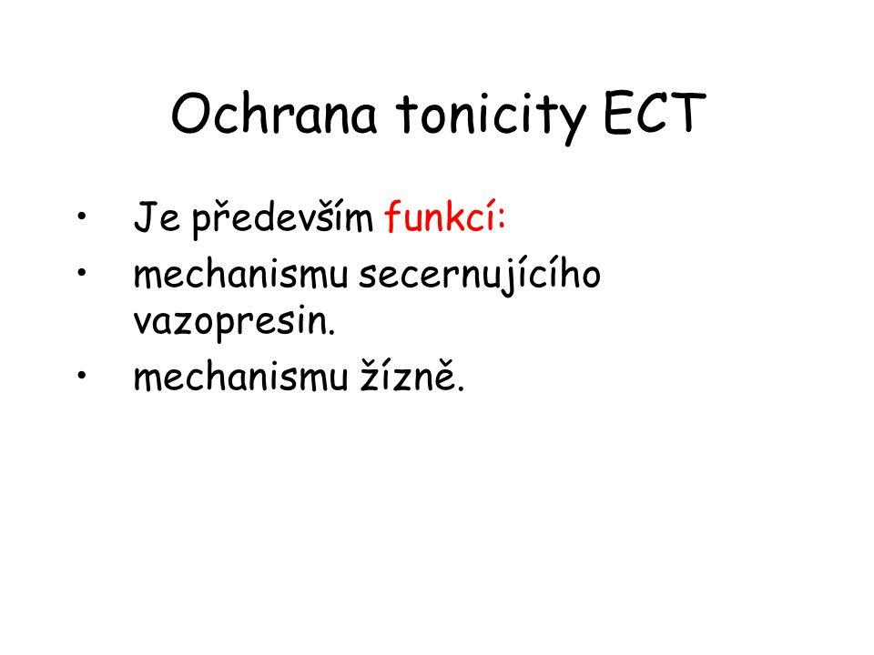 Ochrana tonicity ECT •Je především funkcí: •mechanismu secernujícího vazopresin. •mechanismu žízně.