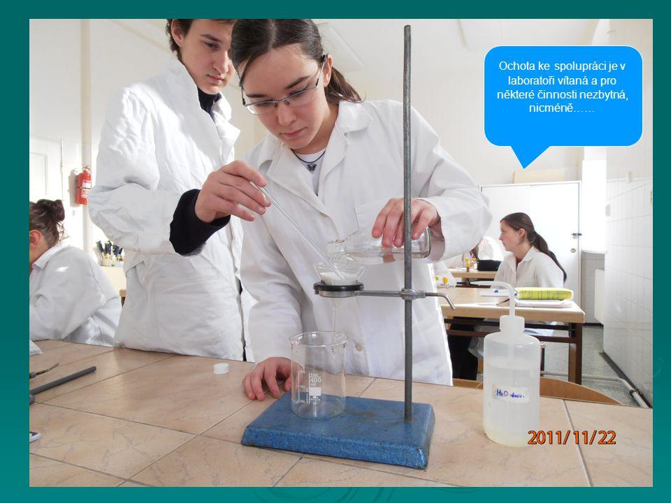 Ochota ke spolupráci je v laboratoři vítaná a pro některé činnosti nezbytná, nicméně……