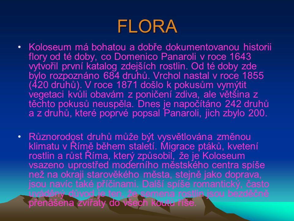 FLORA •Koloseum má bohatou a dobře dokumentovanou historii flory od té doby, co Domenico Panaroli v roce 1643 vytvořil první katalog zdejších rostlin.