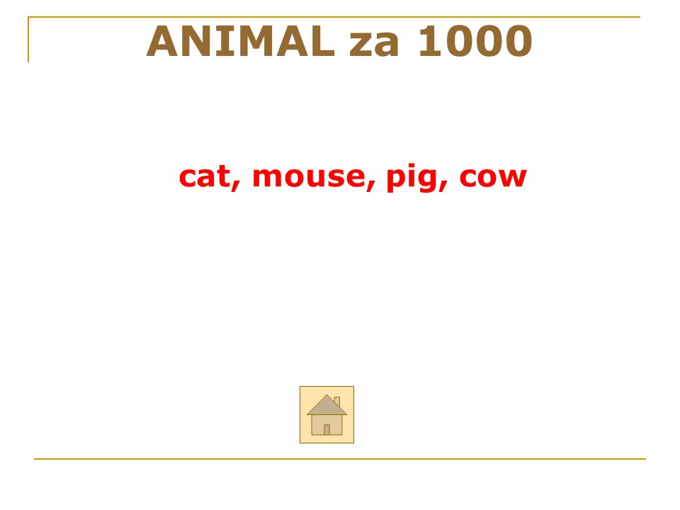 """Řekni anglicky: """"kočka, myš, prase, kráva ANIMAL za 1000 ODPOVĚĎ"""