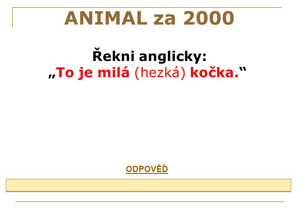 ANIMAL za 1000 cat, mouse, pig, cow