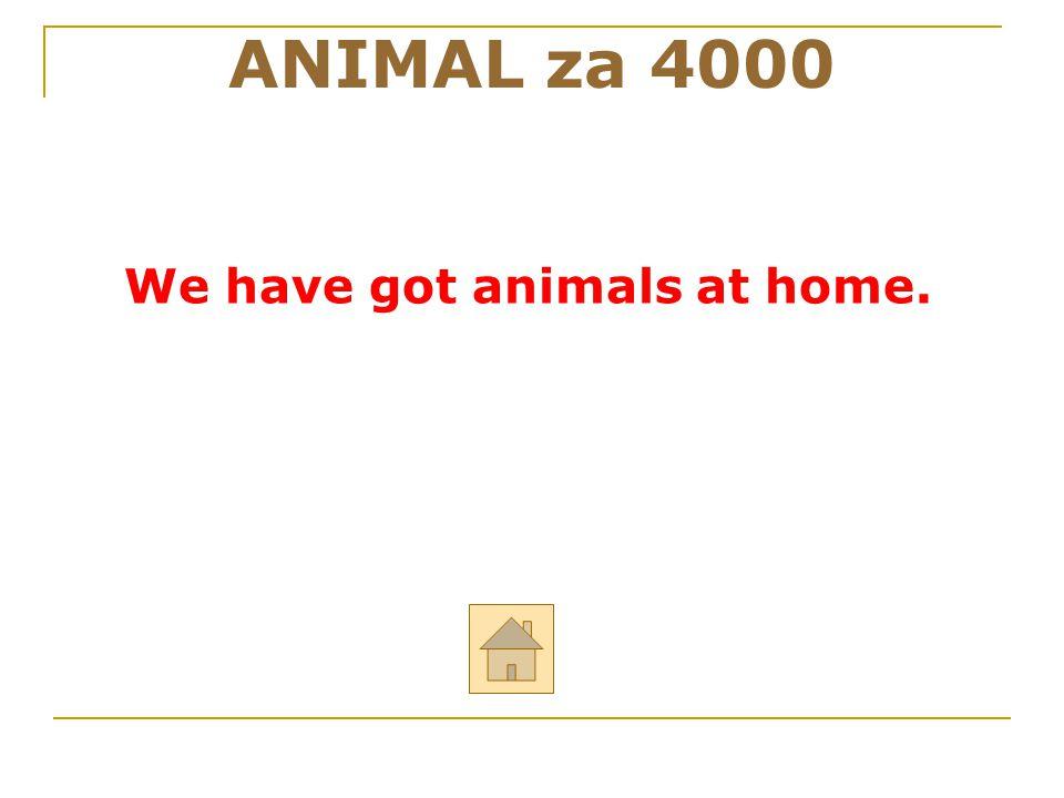"""ANIMAL za 4000 ODPOVĚĎ Řekni anglicky: """"My máme doma zvířata."""