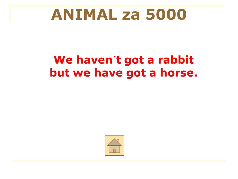 """ANIMAL za 5000 ODPOVĚĎ Řekni anglicky: """"My nemáme králíka, ale my máme koně."""
