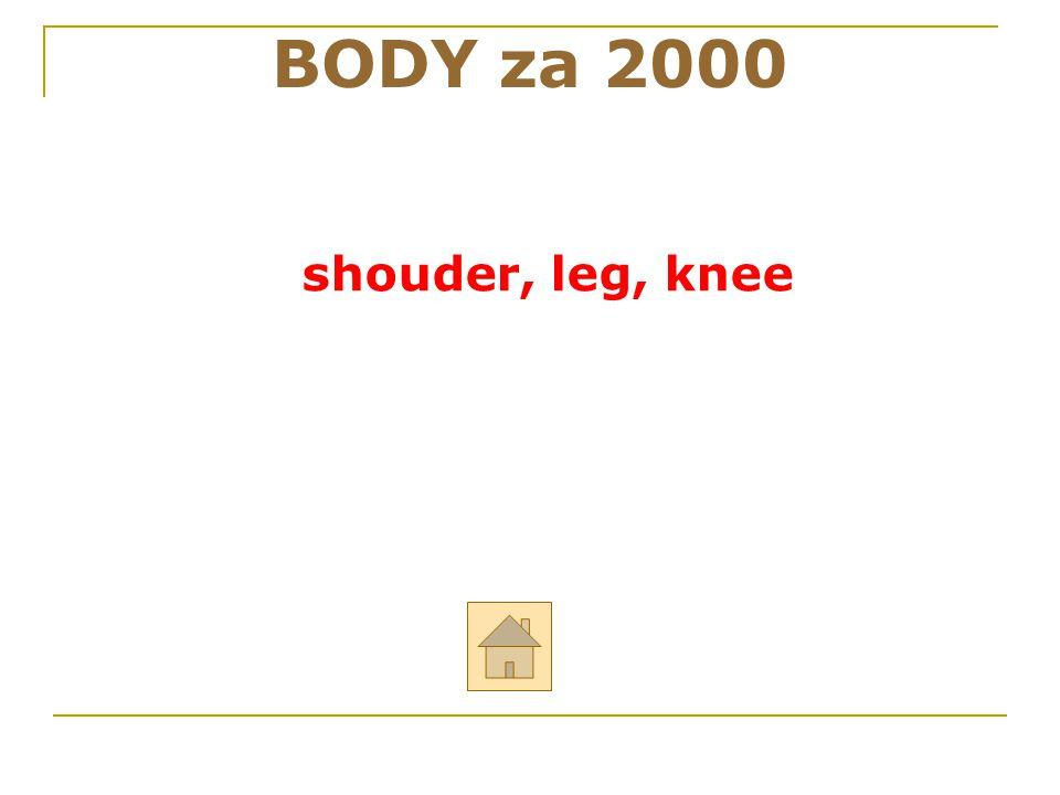 """BODY za 2000 ODPOVĚĎ Řekni anglicky: """"rameno, noha, koleno """""""
