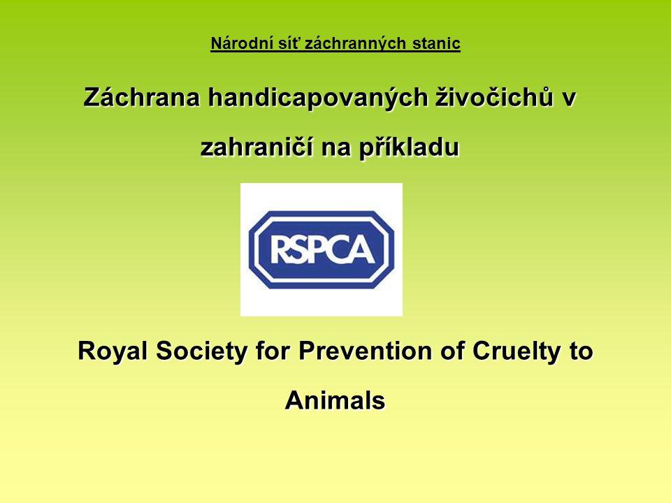 Národní síť záchranných stanic Royal Society for Prevention of Cruelty to Animals Záchrana handicapovaných živočichů v zahraničí na příkladu