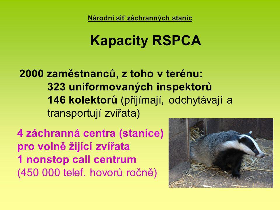 Národní síť záchranných stanic 2000 zaměstnanců, z toho v terénu: 323 uniformovaných inspektorů 146 kolektorů (přijímají, odchytávají a transportují zvířata) Kapacity RSPCA 4 záchranná centra (stanice) pro volně žijící zvířata 1 nonstop call centrum (450 000 telef.