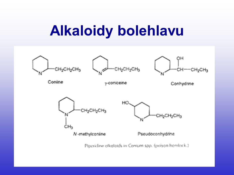 Alkaloidy bolehlavu