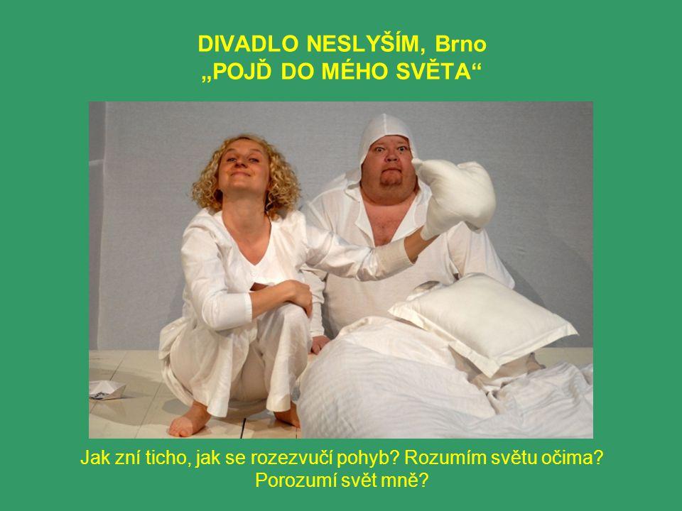 """DIVADLO NESLYŠÍM, Brno """"POJĎ DO MÉHO SVĚTA Jak zní ticho, jak se rozezvučí pohyb."""