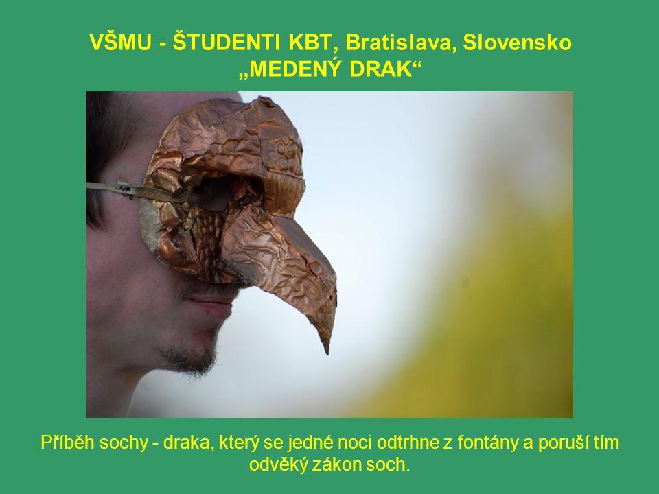 """VŠMU - ŠTUDENTI KBT, Bratislava, Slovensko """"MEDENÝ DRAK Příběh sochy - draka, který se jedné noci odtrhne z fontány a poruší tím odvěký zákon soch."""