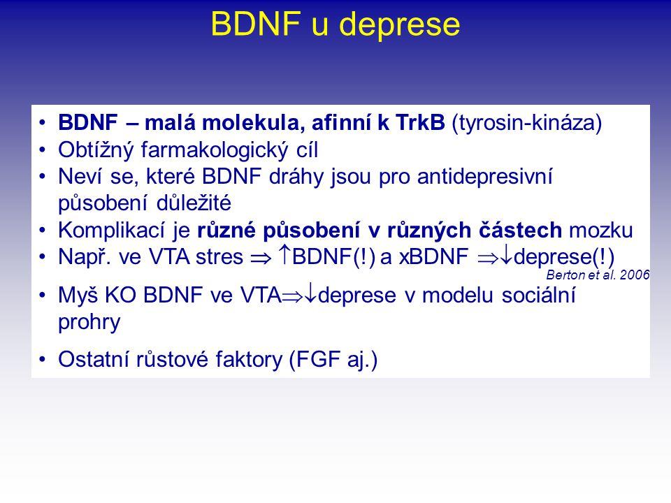 •BDNF – malá molekula, afinní k TrkB (tyrosin-kináza) •Obtížný farmakologický cíl •Neví se, které BDNF dráhy jsou pro antidepresivní působení důležité