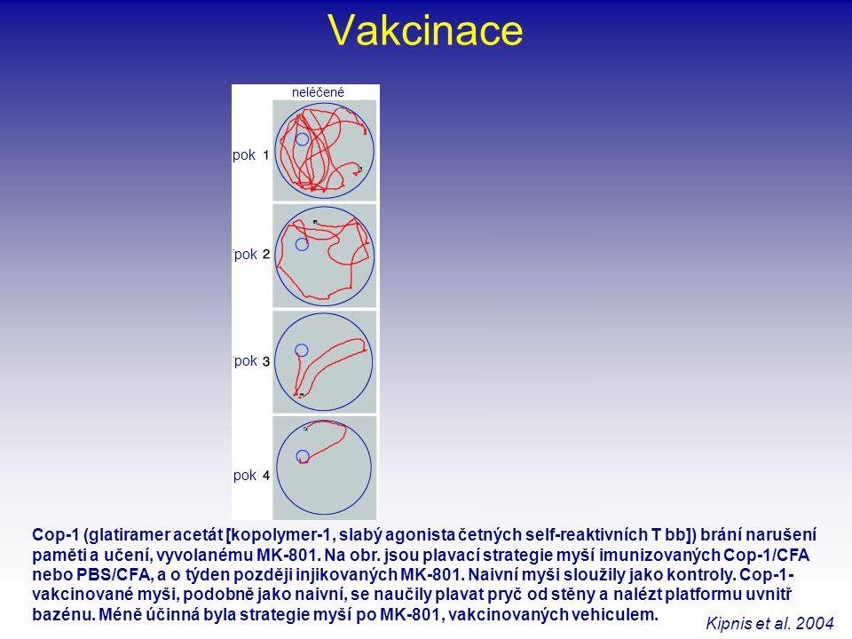 Vakcinace Cop-1 (glatiramer acetát [kopolymer-1, slabý agonista četných self-reaktivních T bb]) brání narušení paměti a učení, vyvolanému MK-801. Na o