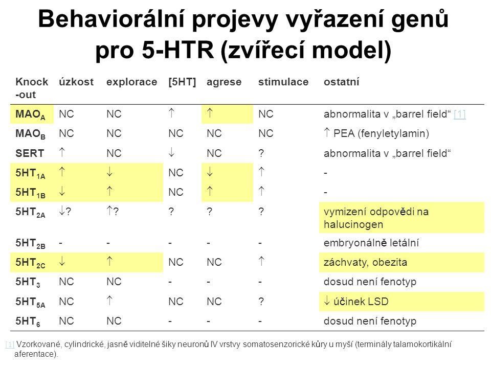 """Behaviorální projevy vyřazení genů pro 5-HTR (zvířecí model) Knock -out úzkostexplorace[5HT]agresestimulaceostatní MAO A NC  abnormalita v """"barrel f"""