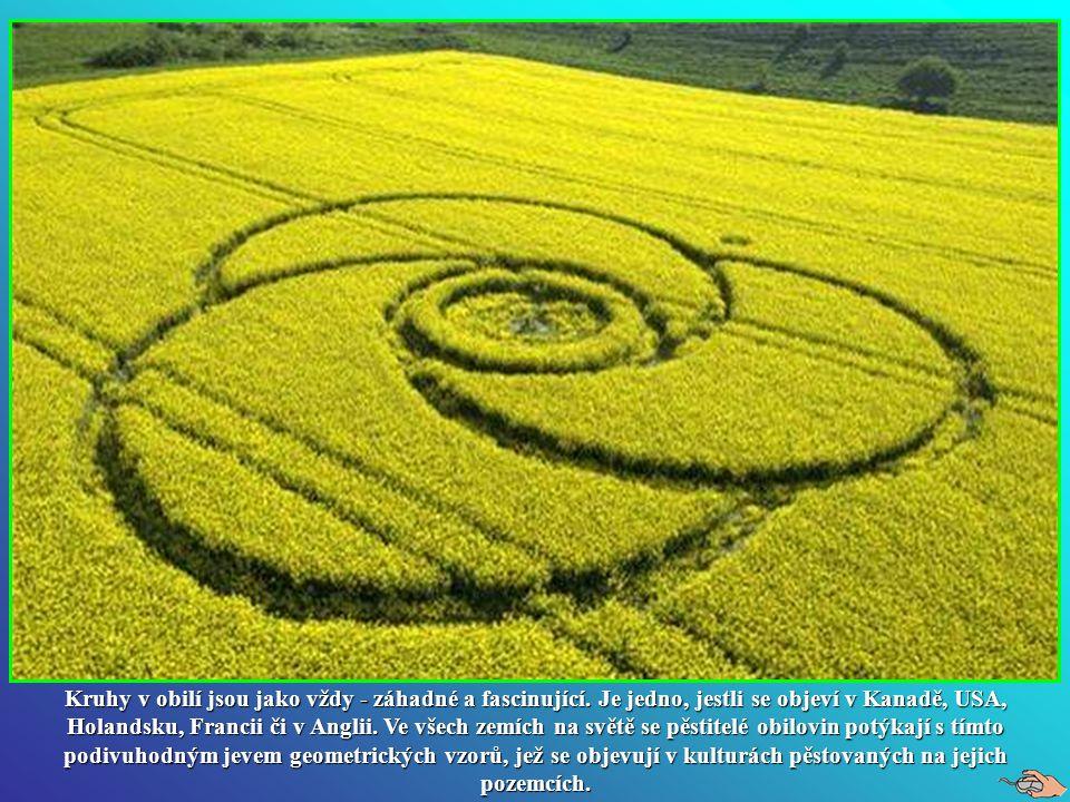 Kruhy v obilí. Kruhy v obilí.