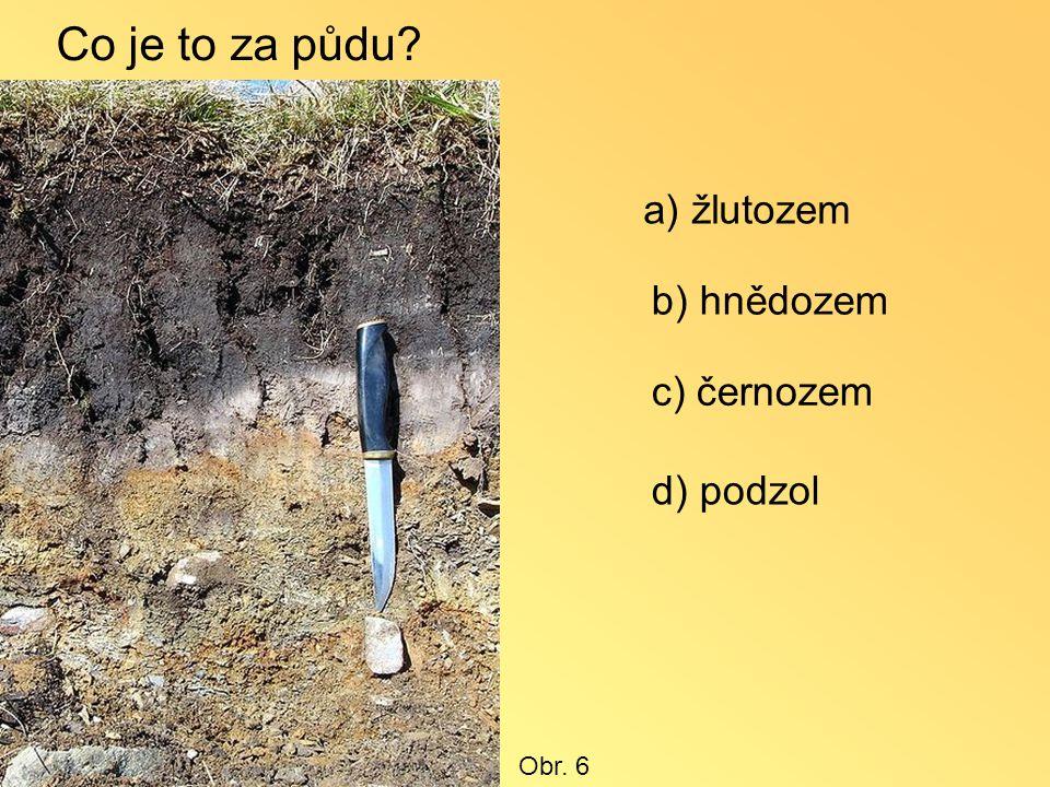 Co je to za půdu? a) žlutozem b) hnědozem c) černozem d) podzol Obr. 6