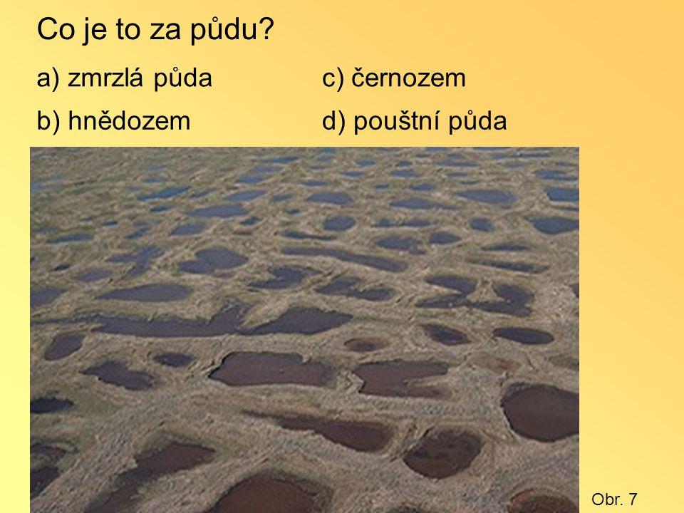 Co je to za půdu? a) zmrzlá půda b) hnědozem c) černozem d) pouštní půda Obr. 7