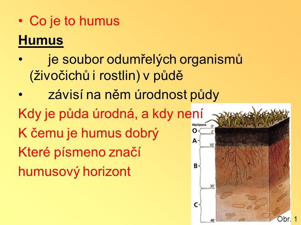•Co je to humus Humus •je soubor odumřelých organismů (živočichů i rostlin) v půdě •závisí na něm úrodnost půdy Kdy je půda úrodná, a kdy není K čemu
