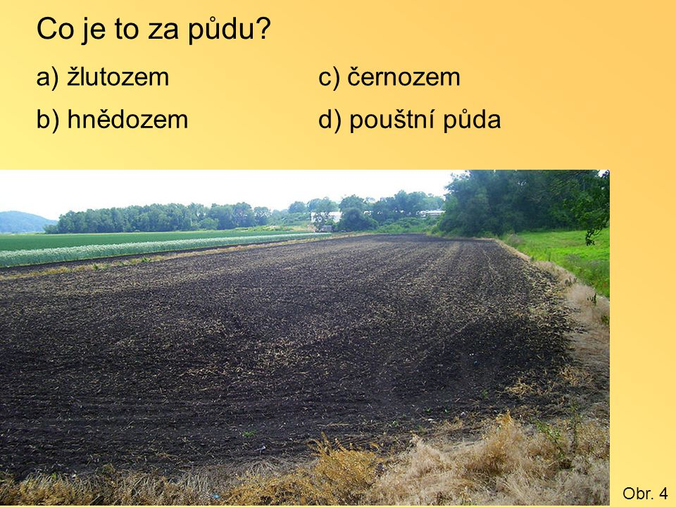 Co je to za půdu? a) žlutozem b) hnědozem c) černozem d) pouštní půda Obr. 4