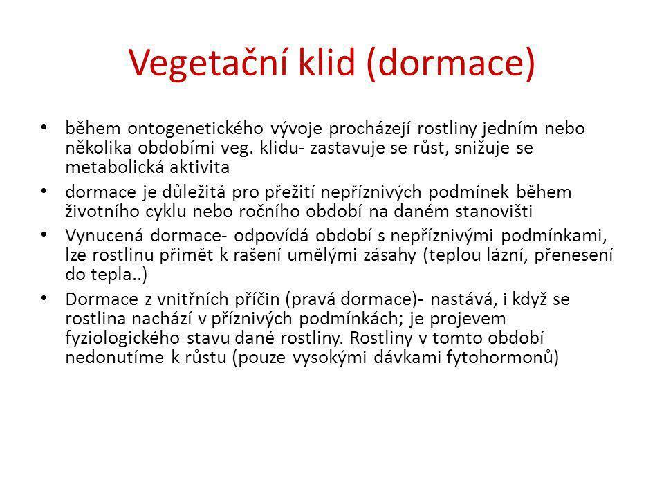 Vegetační klid (dormace) • během ontogenetického vývoje procházejí rostliny jedním nebo několika obdobími veg. klidu- zastavuje se růst, snižuje se me