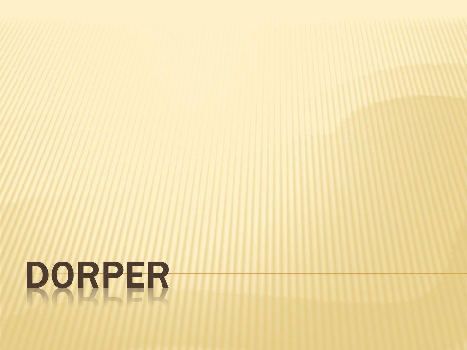 Vyšlechtěno v Jižní Africe v roce 1930 křížením Perských černohlavých ovcí s berany Dorset Horn.