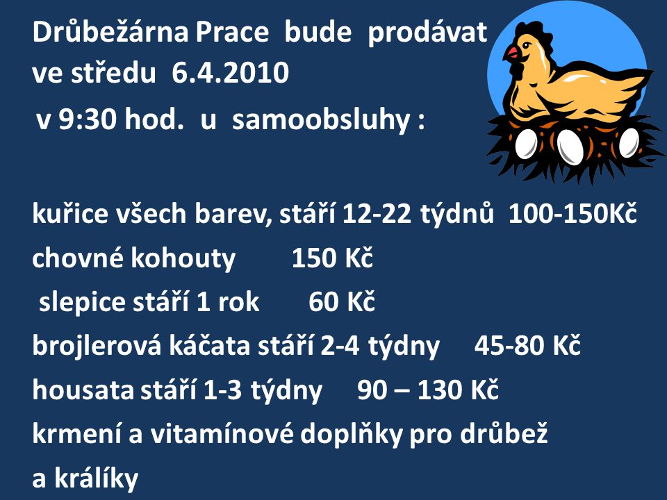 Drůbežárna Prace bude prodávat ve středu 6.4.2010 v 9:30 hod. u samoobsluhy : kuřice všech barev, stáří 12-22 týdnů 100-150Kč chovné kohouty 150 Kč sl
