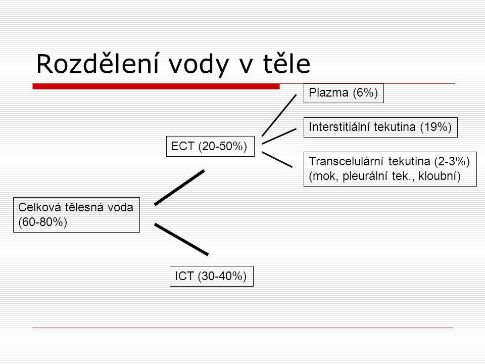 Rozdělení vody v těle Plazma (6%) ICT (30-40%) Celková tělesná voda (60-80%) Interstitiální tekutina (19%) Transcelulární tekutina (2-3%) (mok, pleurální tek., kloubní) ECT (20-50%)