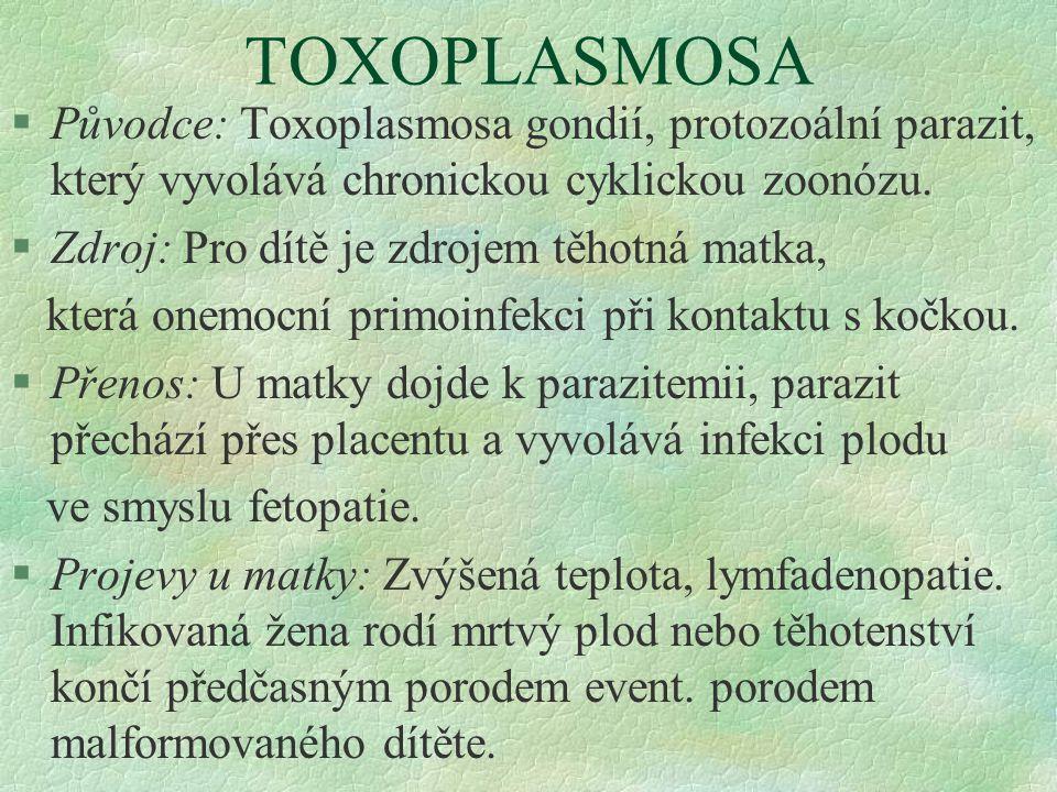 TOXOPLASMOSA §Původce: Toxoplasmosa gondií, protozoální parazit, který vyvolává chronickou cyklickou zoonózu. §Zdroj: Pro dítě je zdrojem těhotná matk