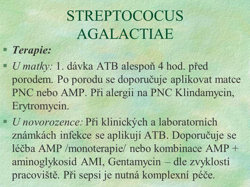 STREPTOCOCUS AGALACTIAE §Terapie: §U matky: 1. dávka ATB alespoň 4 hod. před porodem. Po porodu se doporučuje aplikovat matce PNC nebo AMP. Při alergi