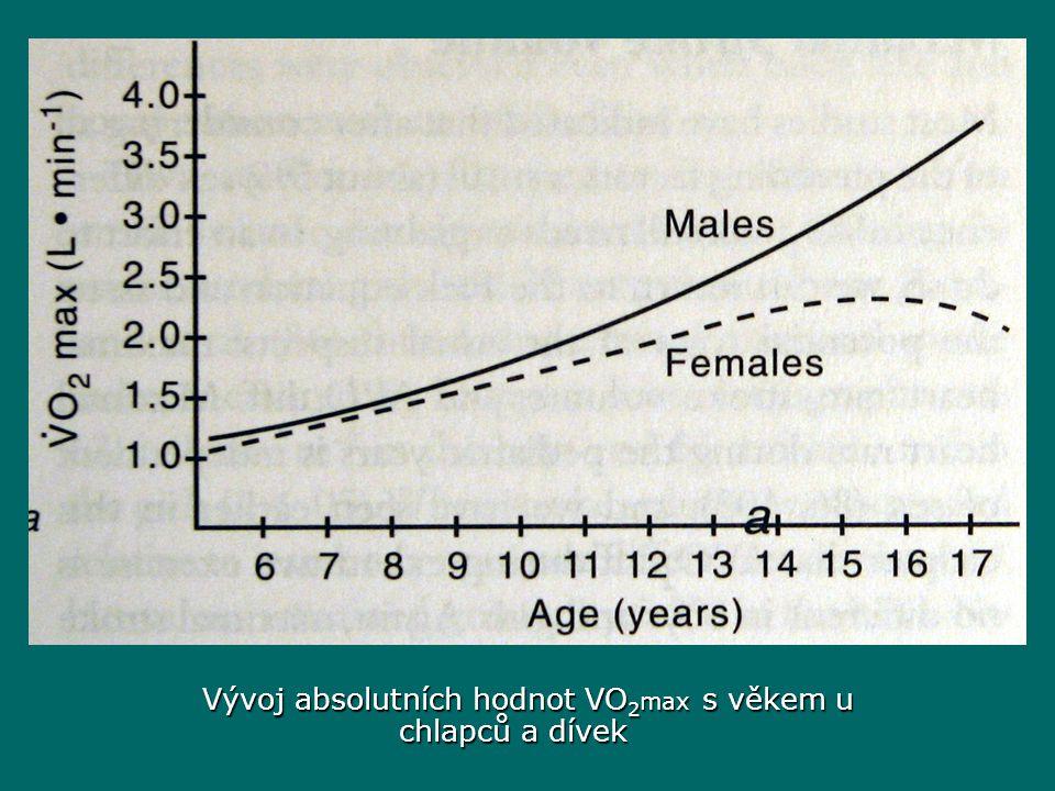 Vývoj absolutních hodnot VO 2 max s věkem u chlapců a dívek Vývoj absolutních hodnot VO 2 max s věkem u chlapců a dívek