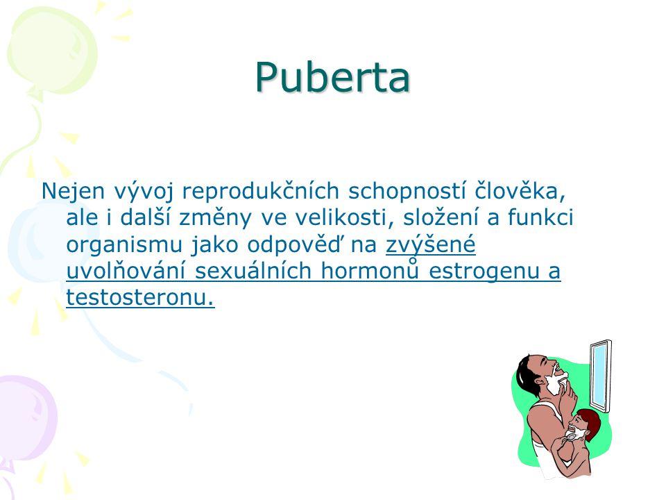 Puberta Nejen vývoj reprodukčních schopností člověka, ale i další změny ve velikosti, složení a funkci organismu jako odpověď na zvýšené uvolňování sexuálních hormonů estrogenu a testosteronu.
