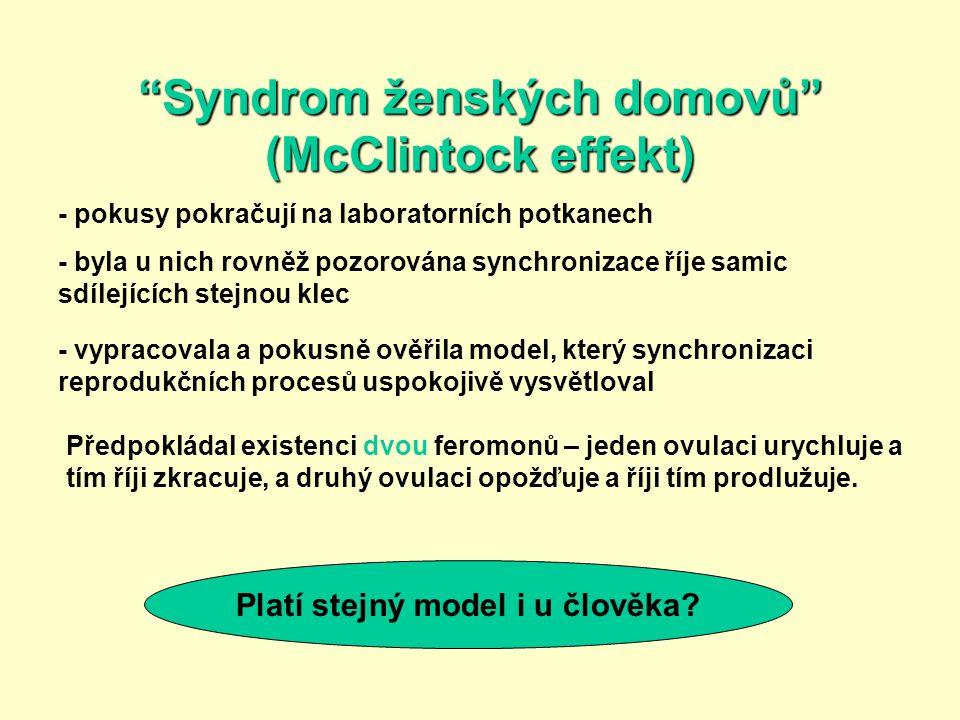 """""""Syndrom ženských domovů"""" (McClintock effekt) - pokusy pokračují na laboratorních potkanech - byla u nich rovněž pozorována synchronizace říje samic s"""