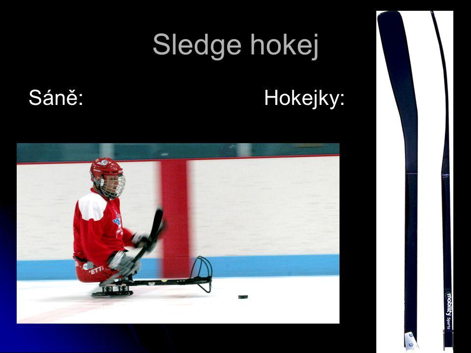 Sledge hokej Sáně:Hokejky: