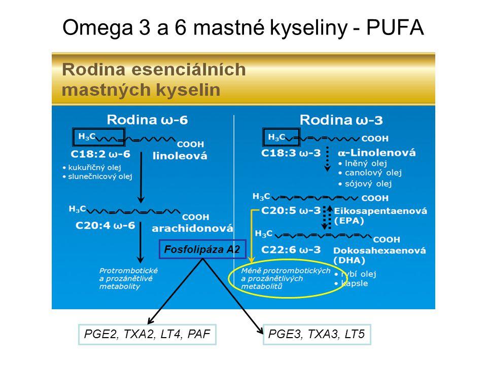 Omega 3 a 6 mastné kyseliny - PUFA Fosfolipáza A2 PGE2, TXA2, LT4, PAFPGE3, TXA3, LT5