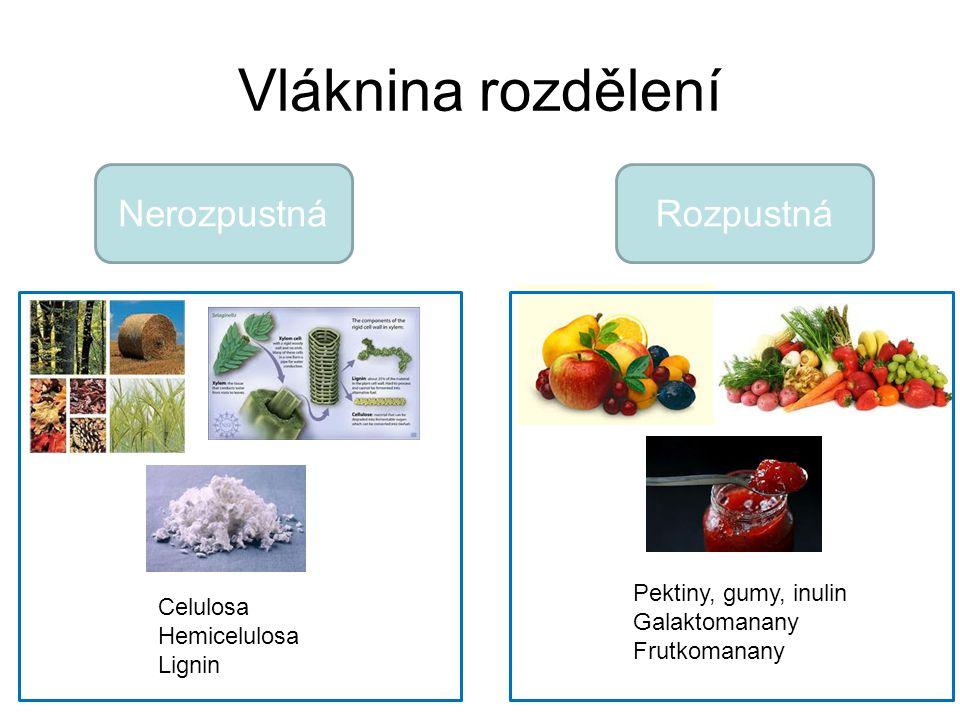 Vláknina rozdělení NerozpustnáRozpustná Celulosa Hemicelulosa Lignin Pektiny, gumy, inulin Galaktomanany Frutkomanany