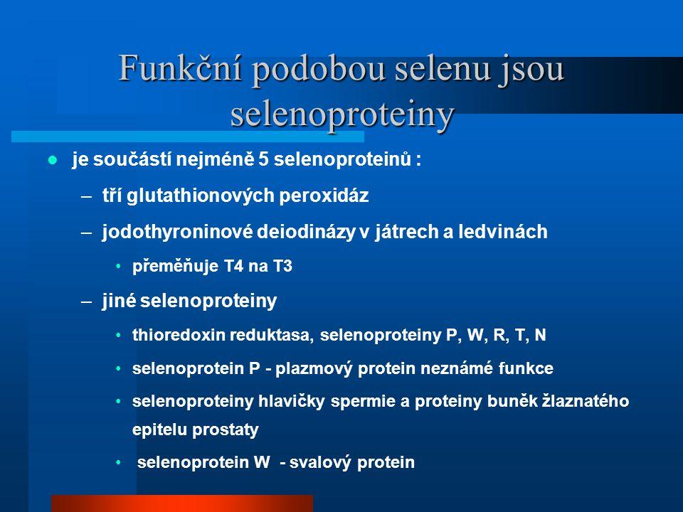 Funkční podobou selenu jsou selenoproteiny  je součástí nejméně 5 selenoproteinů : –tří glutathionových peroxidáz –jodothyroninové deiodinázy v játrech a ledvinách •přeměňuje T4 na T3 –jiné selenoproteiny •thioredoxin reduktasa, selenoproteiny P, W, R, T, N •selenoprotein P - plazmový protein neznámé funkce •selenoproteiny hlavičky spermie a proteiny buněk žlaznatého epitelu prostaty • selenoprotein W - svalový protein
