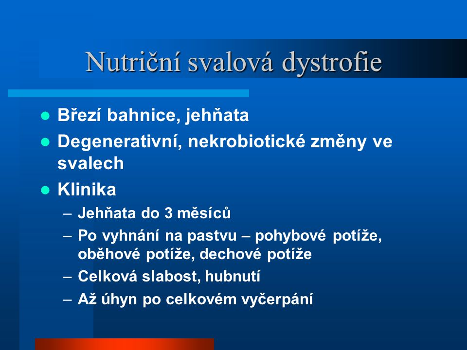 Nutriční svalová dystrofie  Březí bahnice, jehňata  Degenerativní, nekrobiotické změny ve svalech  Klinika –Jehňata do 3 měsíců –Po vyhnání na pastvu – pohybové potíže, oběhové potíže, dechové potíže –Celková slabost, hubnutí –Až úhyn po celkovém vyčerpání