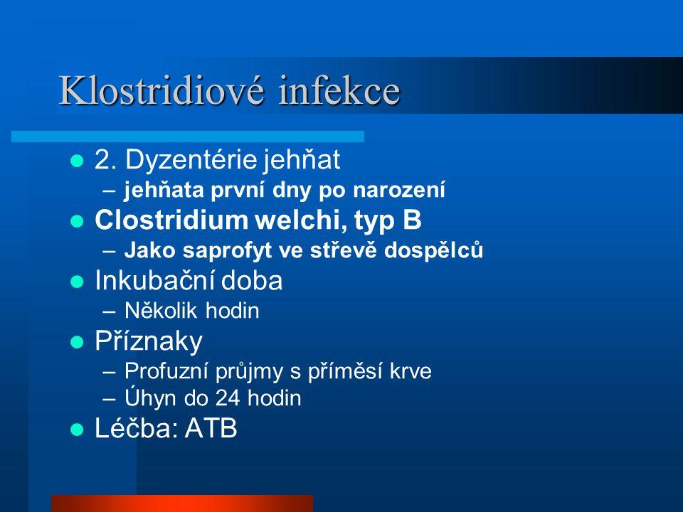 Klostridiové infekce  2. Dyzentérie jehňat –jehňata první dny po narození  Clostridium welchi, typ B –Jako saprofyt ve střevě dospělců  Inkubační d