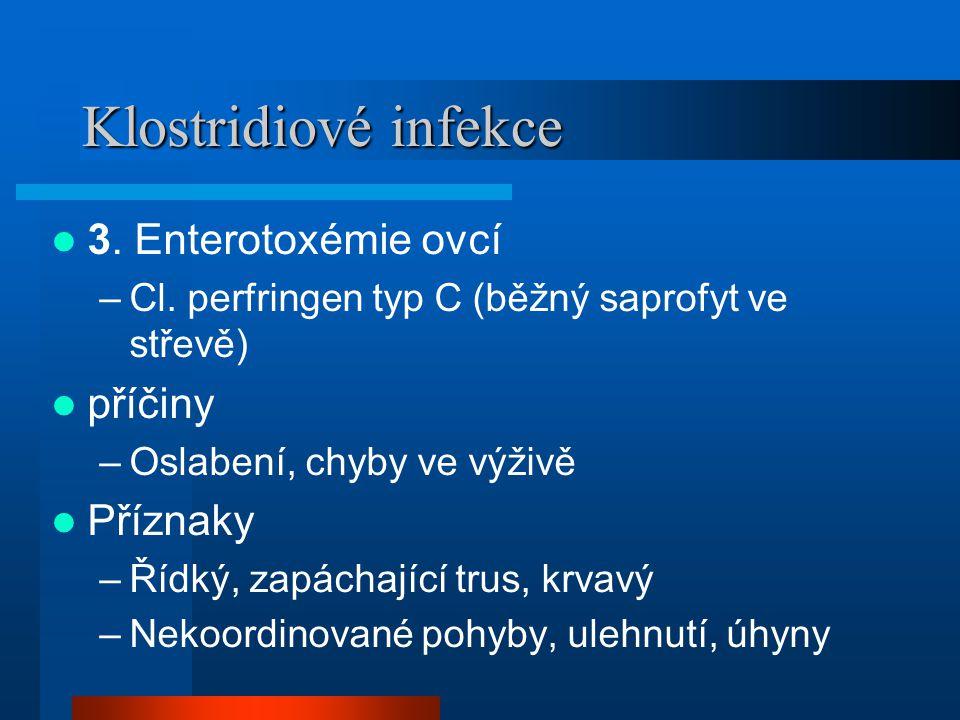 Klostridiové infekce  3. Enterotoxémie ovcí –Cl. perfringen typ C (běžný saprofyt ve střevě)  příčiny –Oslabení, chyby ve výživě  Příznaky –Řídký,