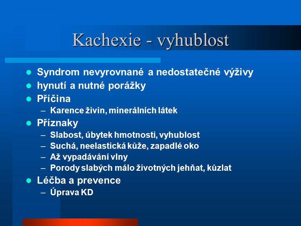Kachexie - vyhublost  Syndrom nevyrovnané a nedostatečné výživy  hynutí a nutné porážky  Příčina –Karence živin, minerálních látek  Příznaky –Slab