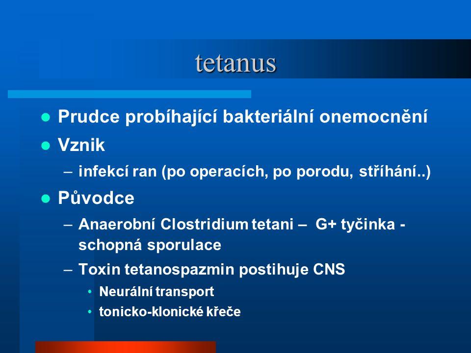 tetanus  Prudce probíhající bakteriální onemocnění  Vznik –infekcí ran (po operacích, po porodu, stříhání..)  Původce –Anaerobní Clostridium tetani