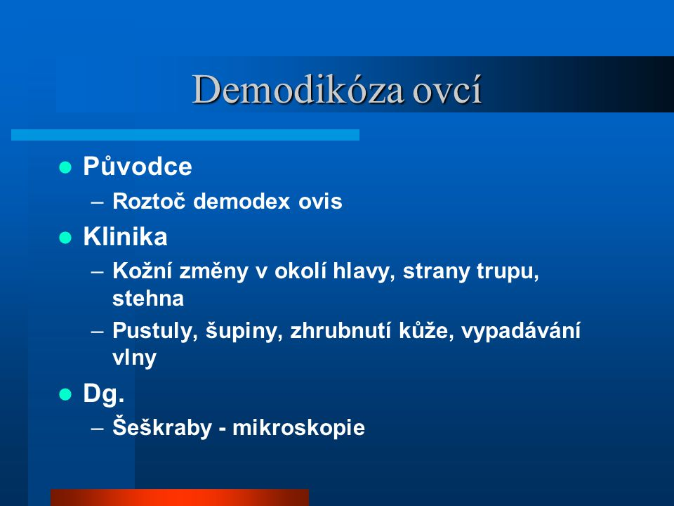 Demodikóza ovcí  Původce –Roztoč demodex ovis  Klinika –Kožní změny v okolí hlavy, strany trupu, stehna –Pustuly, šupiny, zhrubnutí kůže, vypadávání vlny  Dg.