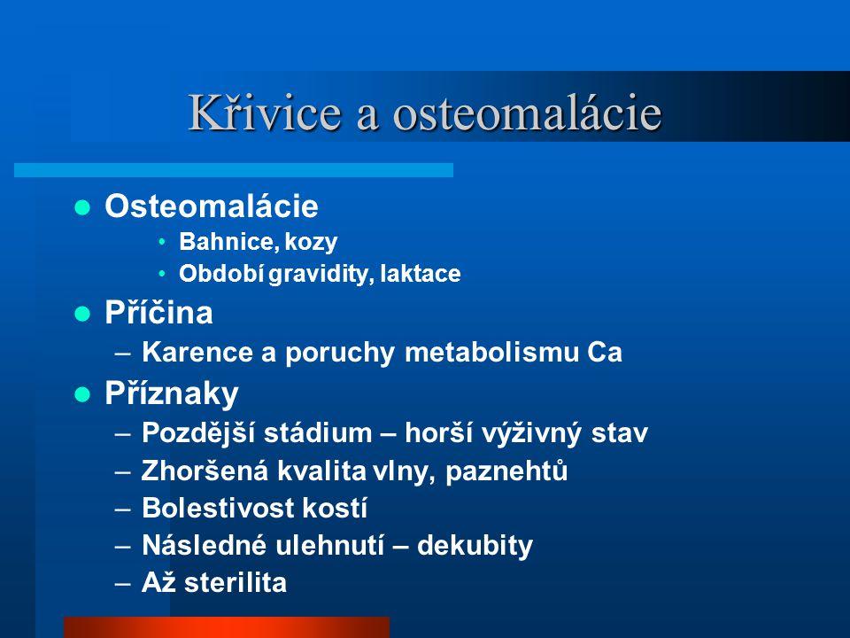 Křivice a osteomalácie  Osteomalácie •Bahnice, kozy •Období gravidity, laktace  Příčina –Karence a poruchy metabolismu Ca  Příznaky –Pozdější stádi